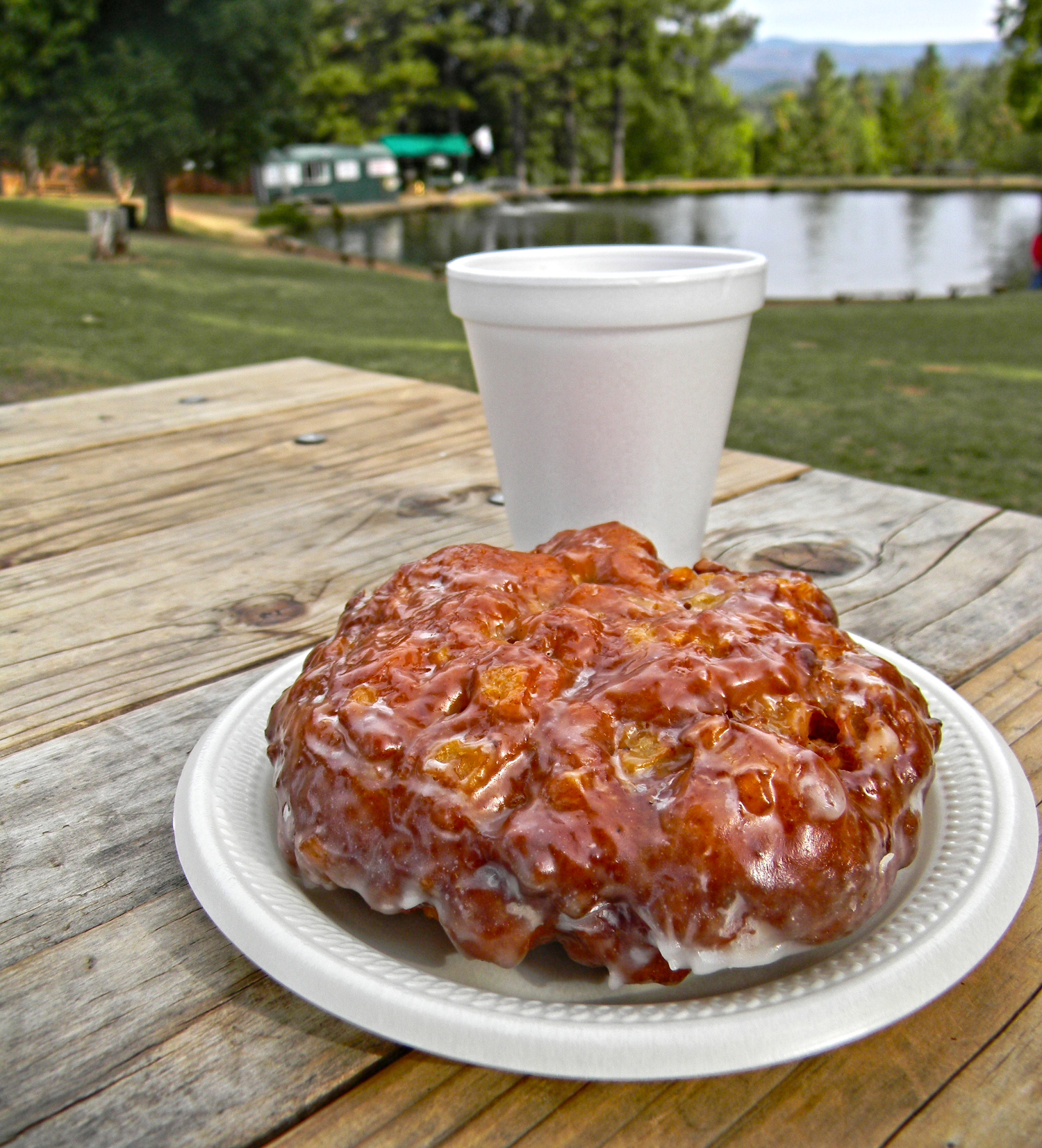 Homemade Apple Hill Donuts Fritters High Hill Ranch